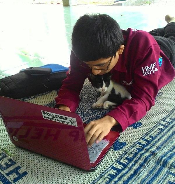 bermain dengan kucing